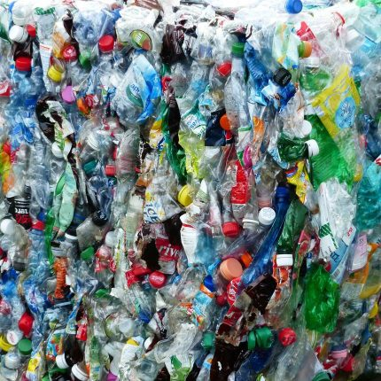 Audit Committee to probe bottle and coffee cup waste